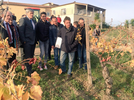 The group and the agricultural minister inspect the vineyard.